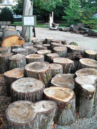 arbres 001.jpg